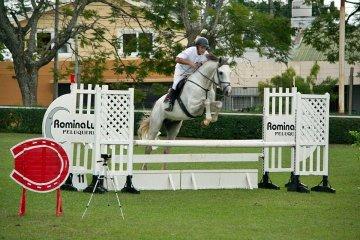 Equitación en el torneo
