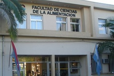 Curso sobre competencias emprendedoras para docentes universitarios de Concordia