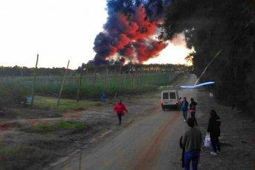 Un incendio provocó pérdidas millonarias en el empaque de una empresa arandanera