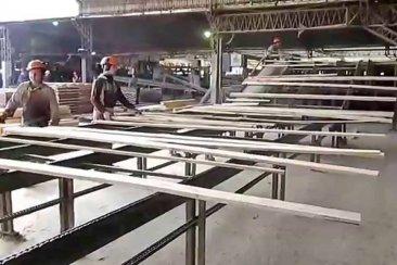 CRISIS: De 70 aserraderos, más 15 ya dejaron de trabajar